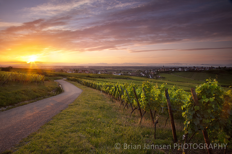 Zettenberg Alsace France Travel Landscape Photography Workshop