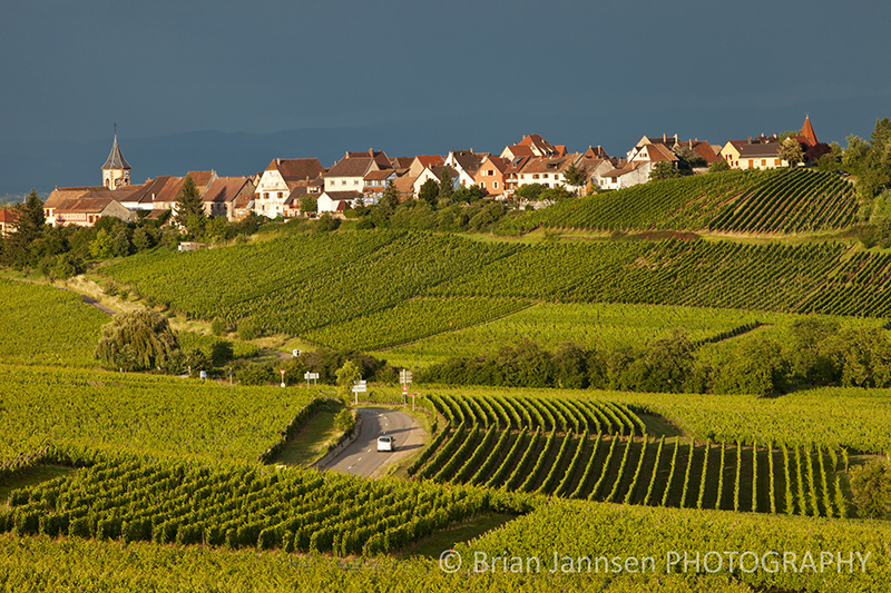 Zellenberg Alsace France Vineyards Photography Workshop