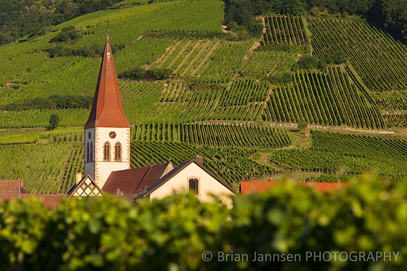 Ammerschwihr Alsace France Vineyards Wine Route Photography Workshop