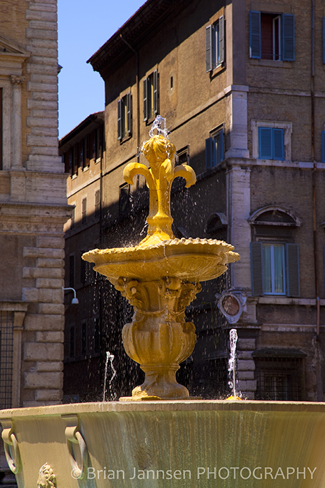 Fountain Piazza Farnese Rome Italy